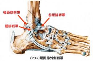 ankle_sprain_1-300x196[1]